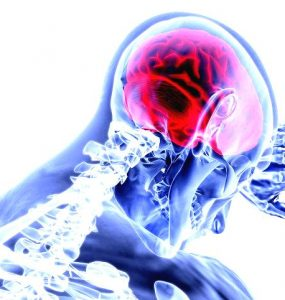 Featured of How the Brain Impacts Our Psychological Development