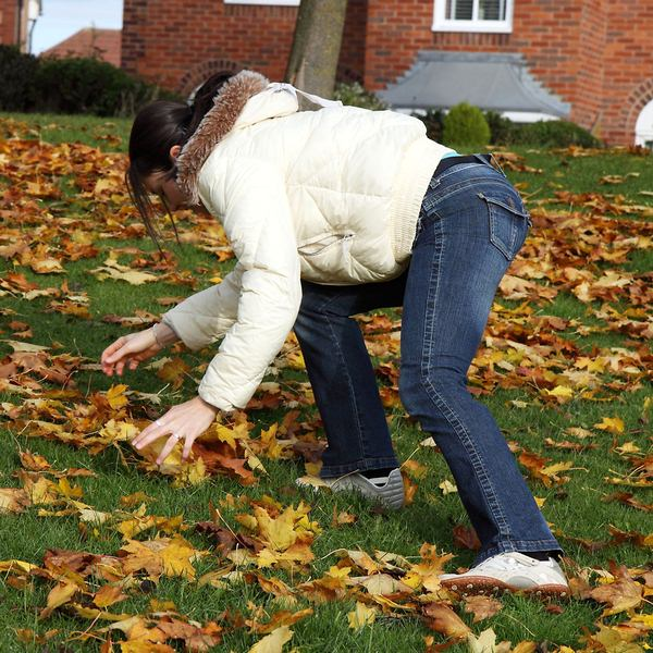 5 Simple Ways to Improve Your Garden by Saving Autumn Leaves