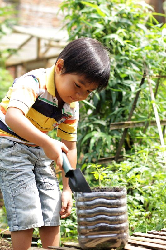 boy planting tomato - How to Plant a Vegetable Garden
