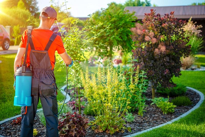 Professional Commercial Garden Maintenance Services