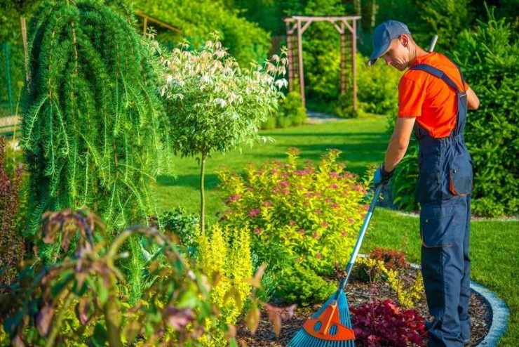 Featured of Professional Commercial Garden Maintenance Services