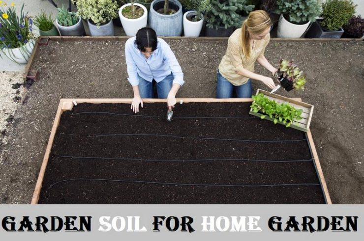 Featured of Garden soil for home garden