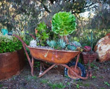 Featured image - Avoid Telltale Beginner Landscaping Mistakes - How to Create a Home Landscape That Looks Professionally Designed